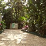 An interesting open-air museum for visiting in Villahermosa, Mexico 2