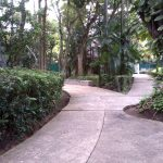 An interesting open-air museum for visiting in Villahermosa, Mexico 3