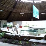 An interesting open-air museum for visiting in Villahermosa, Mexico 7