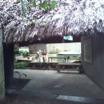 An interesting open-air museum for visiting in Villahermosa, Mexico 16