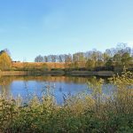 Raknehaugen Landscape