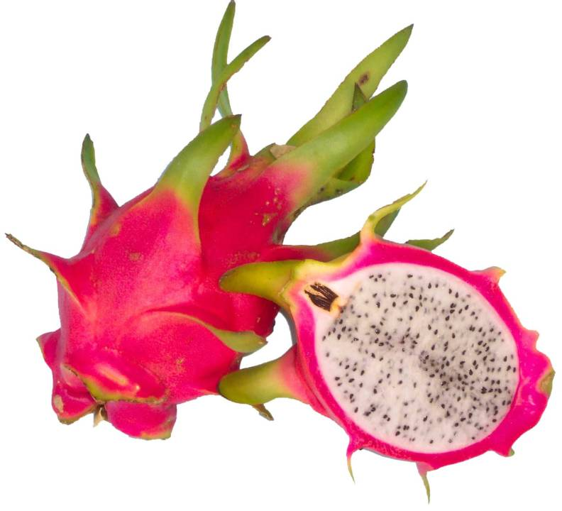 Pitaya, the most exotic Mexican fruit