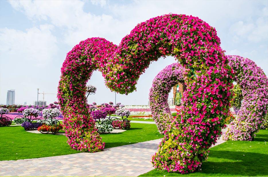 Visit the new Miracle Garden in Dubai