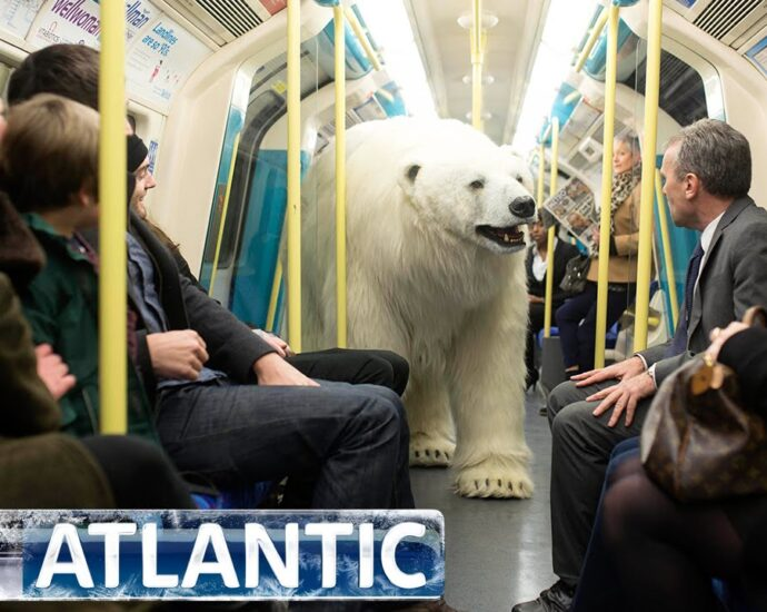 polar bear london