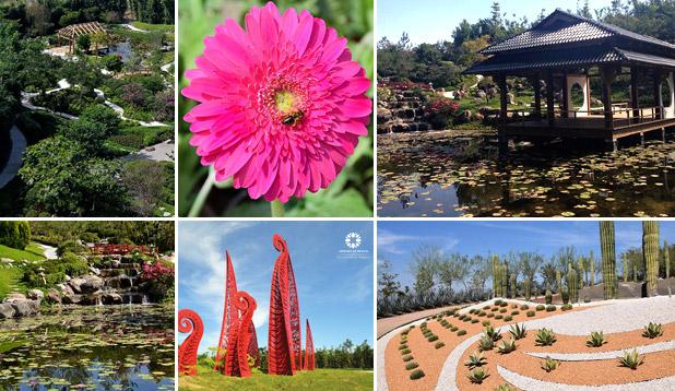 """Gardens of Mexico """"Jardines de México"""" is Naturally magical"""