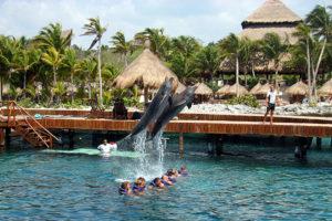 diversion-asegurada-en-el-parque-xcaret-en-cancun-mexico4 3