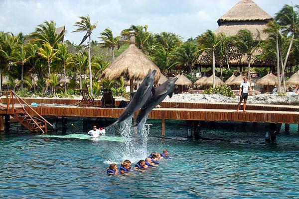 diversion-asegurada-en-el-parque-xcaret-en-cancun-mexico4