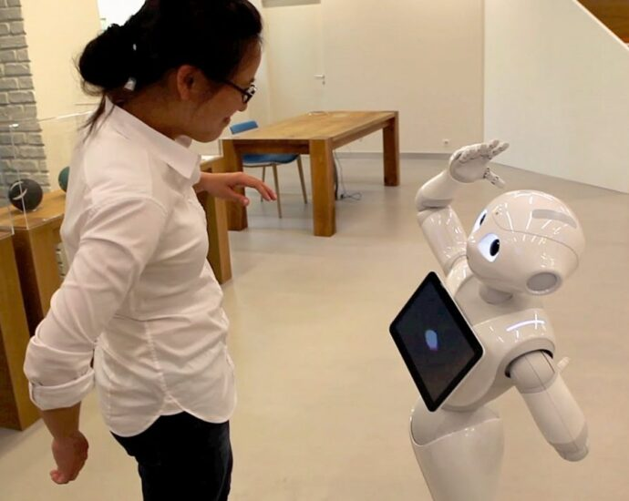 Examples of social robots that can Interact with People