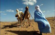 The interesting culture Amazigh