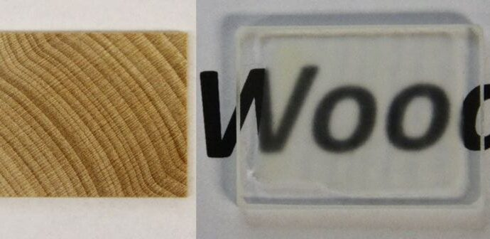 Transparent Wood To Humanity