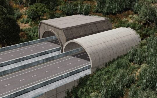 Fantastic Tunnel Entrances for Cities Skylines