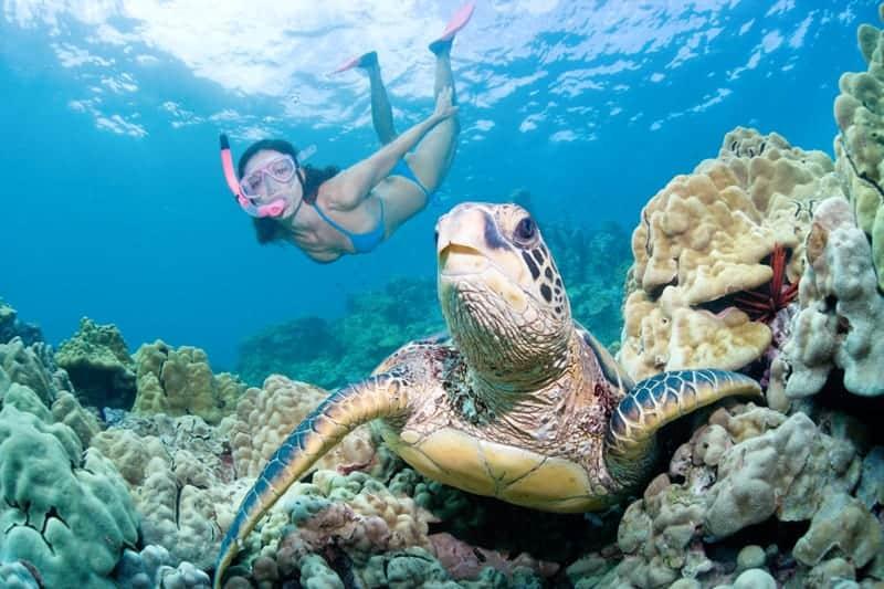 Explore the Amazing Diving Experience at Sri Lanka 1