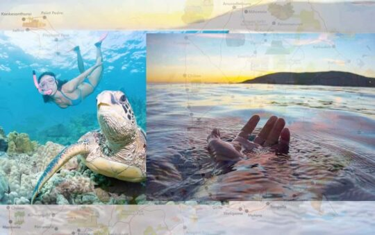 Explore the Amazing Diving Experience at Sri Lanka