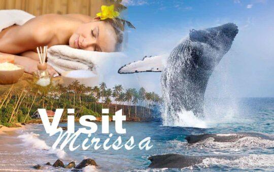 Beach Holidays on Sri Lanka is something Unique – Visit Mirissa