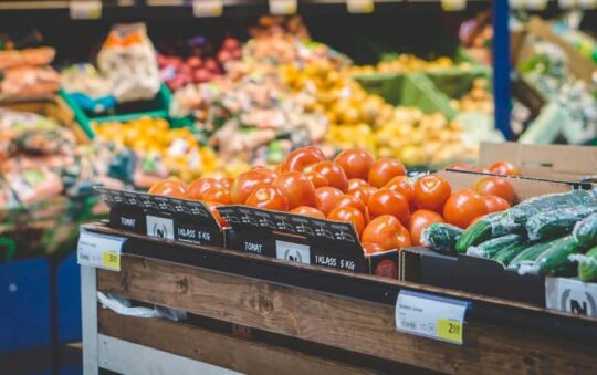 Danish state Rewards Grocery stores that Waste Food