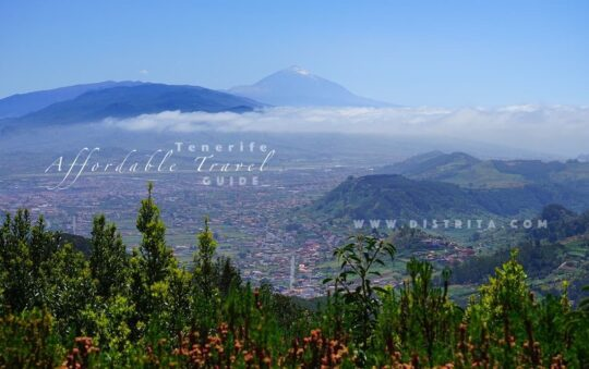 The Most Affordable Travel Experience on Tenerife