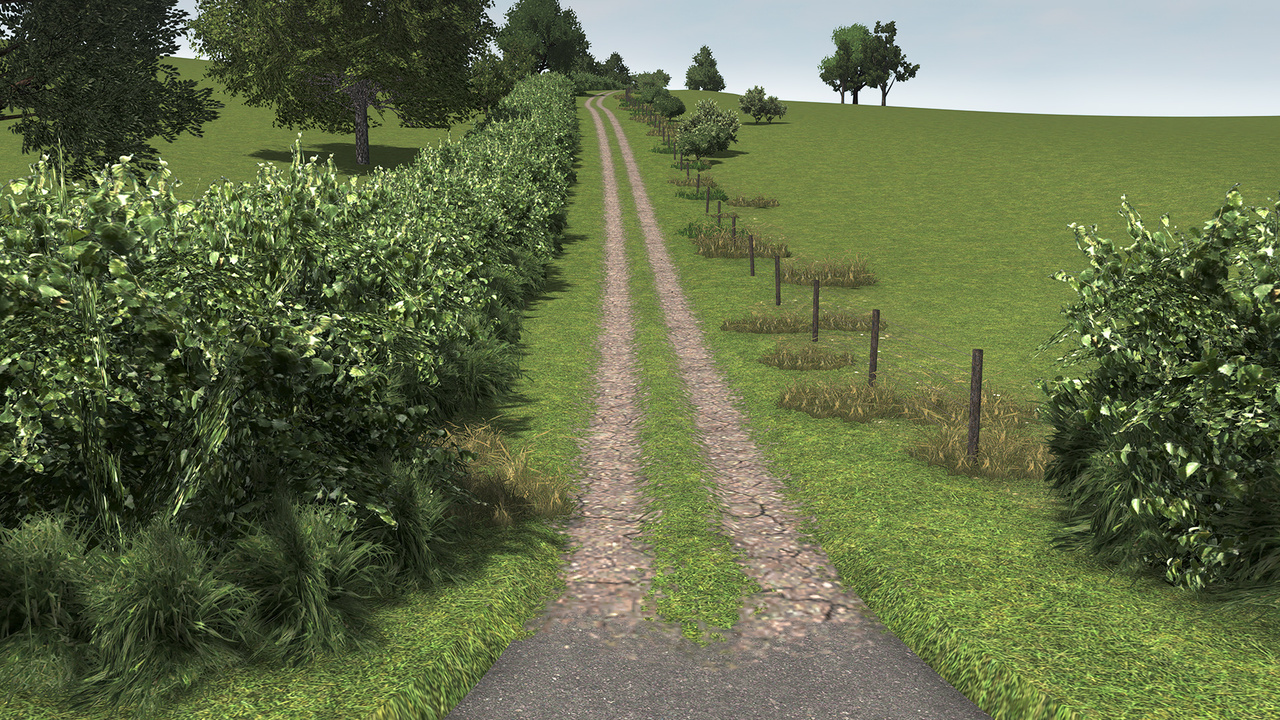 Dirt Roads that Makes Cities Skylines farms look even better