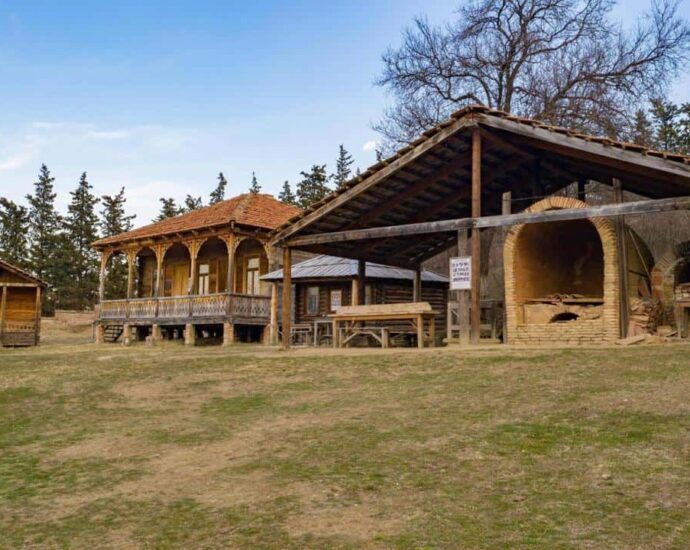 Museums in Tbilisi in the nature