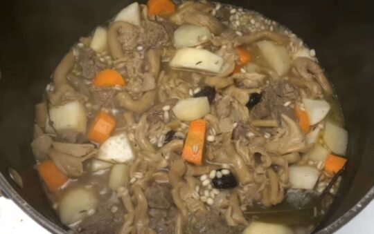 Suaasat – a Greenland dish You should try