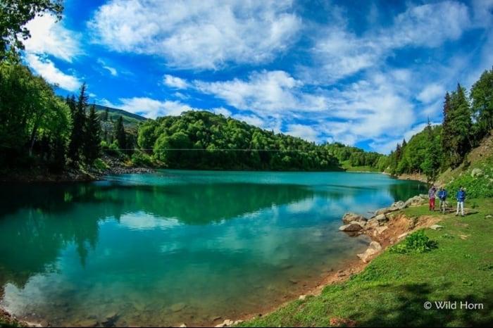 The 5 Best Mountain Resorts In Georgia 7