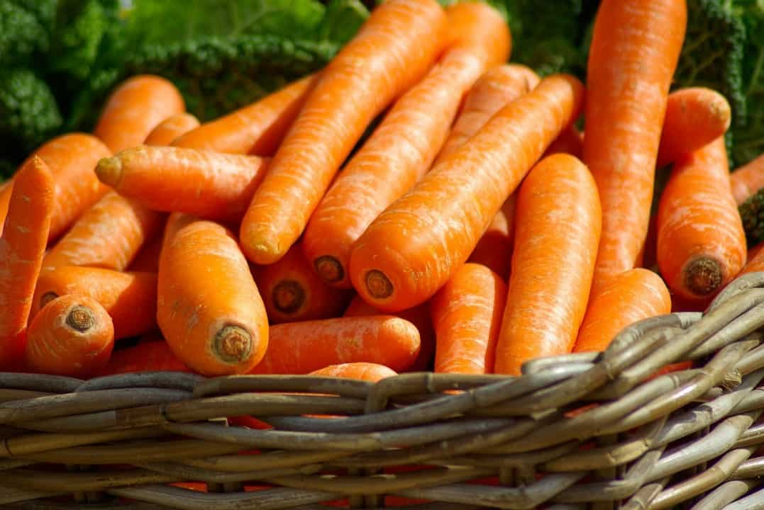 carrots are healthy