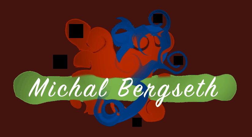 Michal Bergseth 1