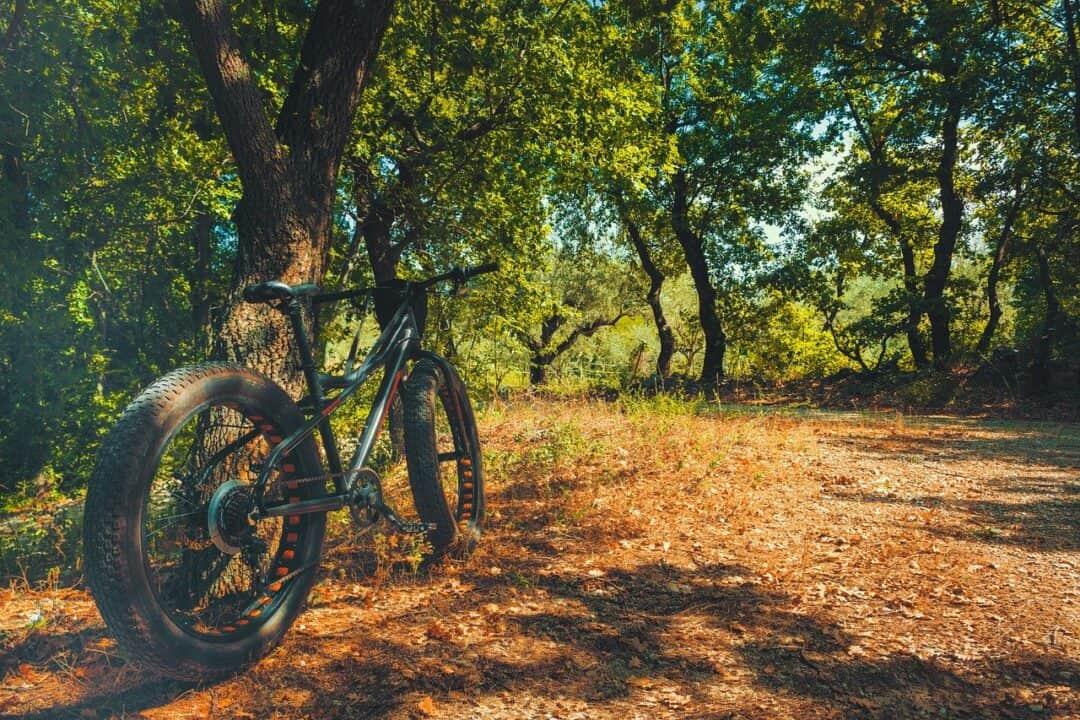 Rent a fat bike in Oulu